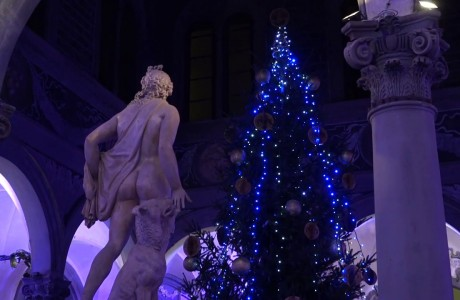 Accesi gli alberi di Natale a Firenze