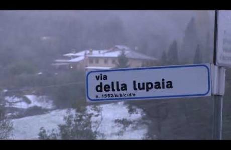 Allerta meteo in Toscana: neve in Mugello