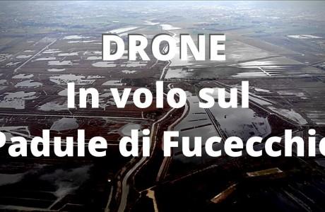 DRONE | In volo sul Padule di Fucecchio