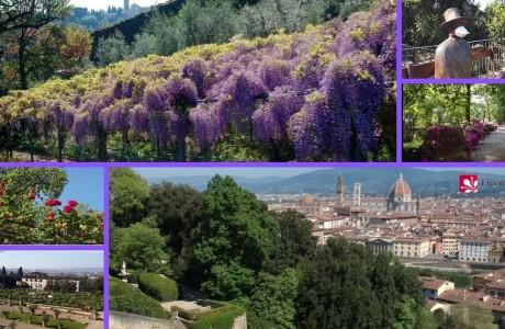 Firenze, rifioriscono i parchi chiusi contestualmente all'emergenza sanitaria Coronavirus