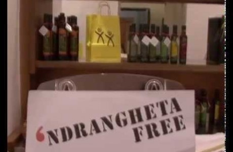 Palazzo Medici è Ndrangheta free
