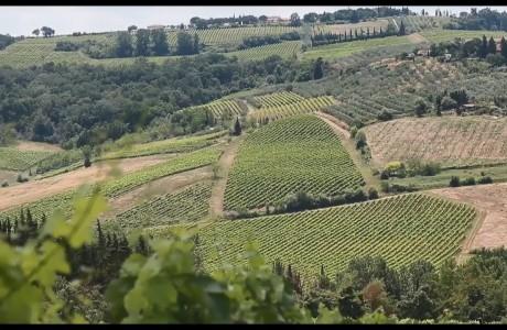 Percorso escursionistico Firenze/Empolese Valdelsa