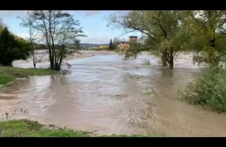 Pioggia e maltempo 17 novembre 2019: le immagini dell'Arno